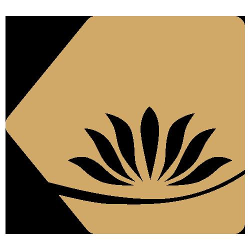 flor-da-sombra